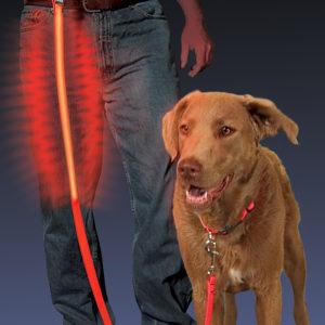 NiteIze Nite Dawg LED valgusega jalutusrihm