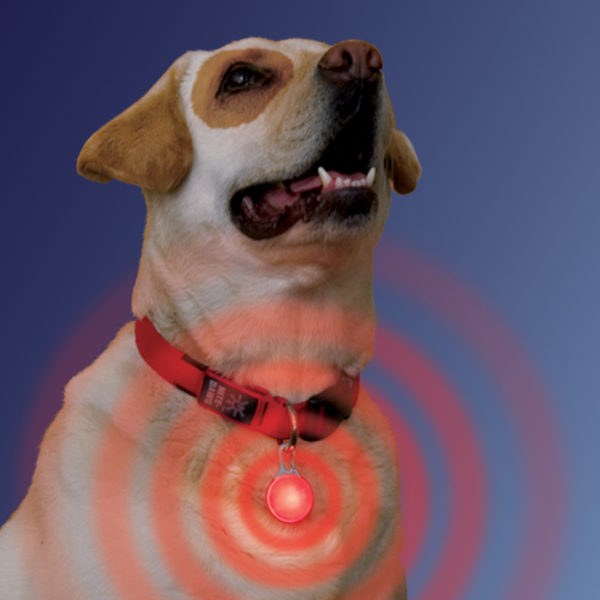 NiteIze SpotLit LED valgustus